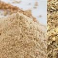 قیمت خرید عمده انواع سبوس گندم دامی امسال چقدر است؟