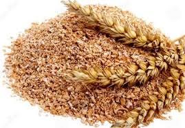 قیمت سبوس برنج دامی